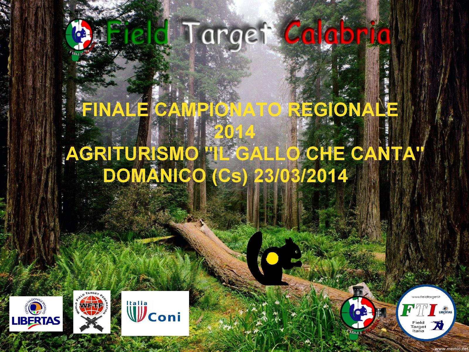 20140224190550_locandina_finale_calabria